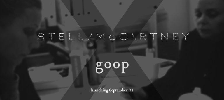 Gwyneth Paltrow & Stella McCartney: Kooperation geplant