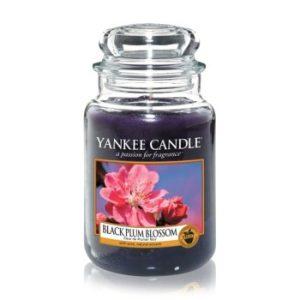 yankee candle plum kerze