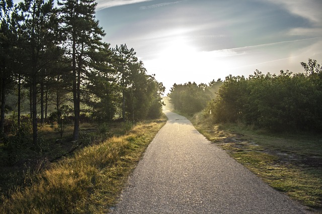 bike-path-189174_640